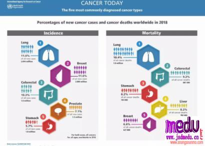知名主持人赵忠祥因患鳞状细胞癌去世!你的饮食,也在滋养癌细胞吗?