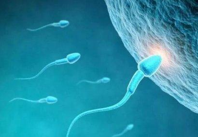 卵细胞受精都有哪些症状表现?哪些信号提醒你要当妈了?