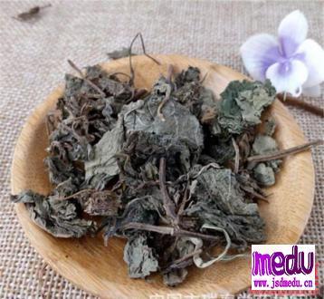 紫苏叶梗的功效与作用:除湿、散寒、解毒