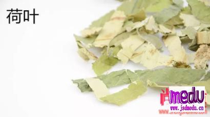 荷叶茶的功效与作用:化解湿气入血,湿气困脾、湿气上头