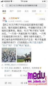 浙江10万鸭子出征灭蝗灾,不实新闻考验读者智商