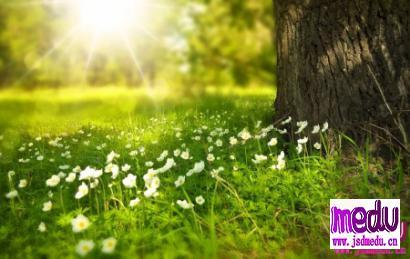 春季肝火旺盛该如何调理?