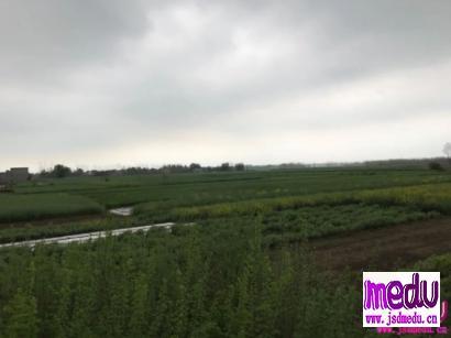 湖北江西九江省界起冲突:请对湖北人善良一点