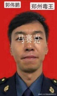 河南郭伟鹏被判刑一年六个月