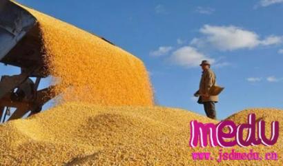 茅台酒涨价、越南禁止大米出口……中国会暴发粮食危机吗?