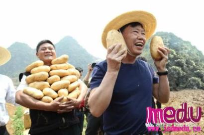 """""""农民院士""""朱有勇:直播1小时卖完25吨土豆"""